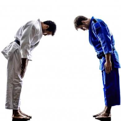 Judo principles