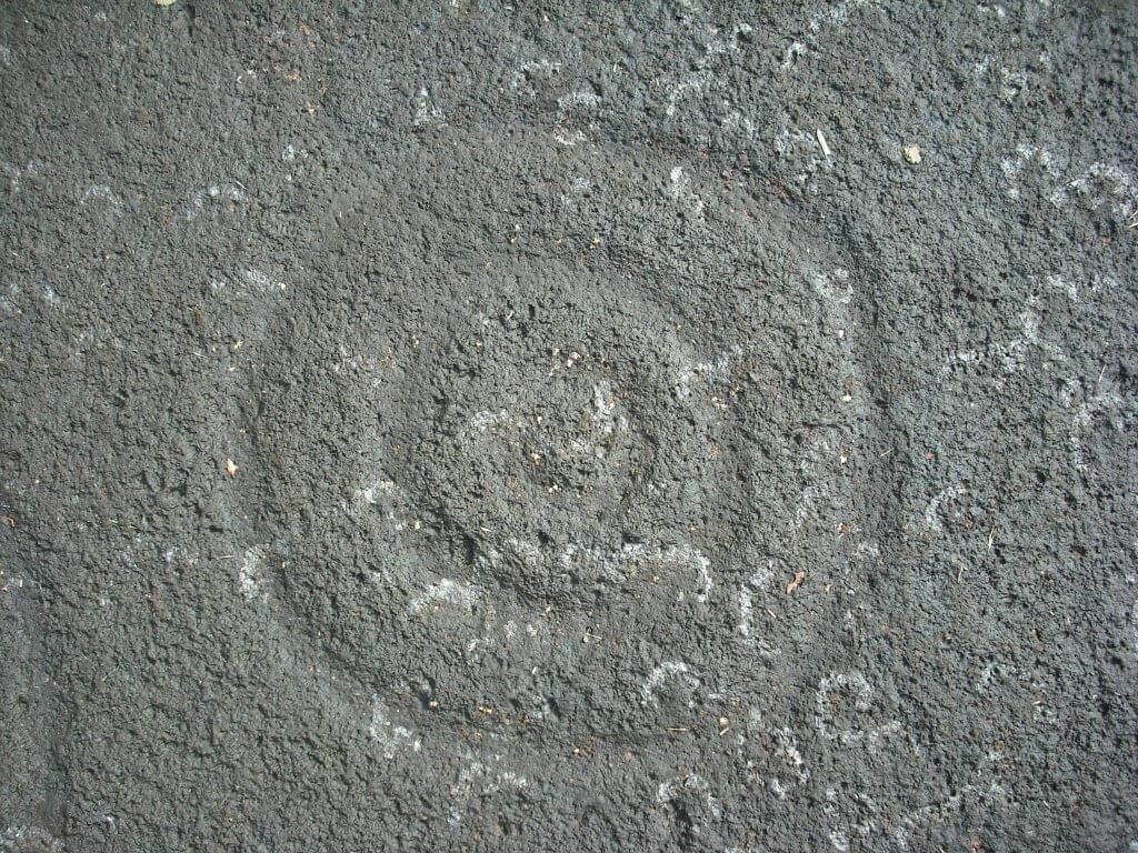 Hinkiori petroglyphs