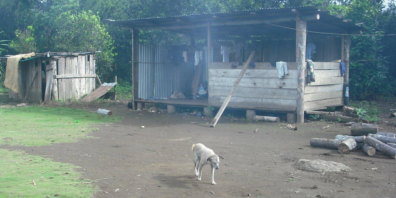 indigenous household